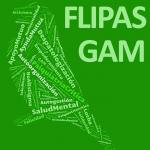Flipas GAM